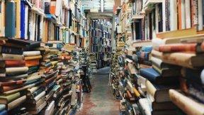Bücher, Bibliothek, Wissen, Persönliches Wissensmanagement, Datenmanagement